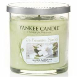Yankee Candle 1 Docht Tumbler Glaskerze klein 198g Celebrations Someone Special