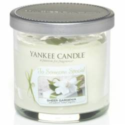 Yankee Candle 1 Docht Tumbler Glaskerze 104g Celebrations Someone Special