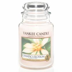 Yankee Candle Jar Glaskerze groß 623g Champaca Blossom