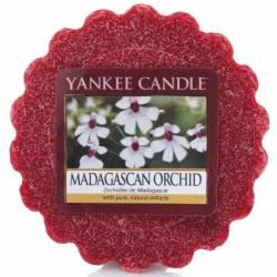 Yankee Candle Tart / Melt Madagascan Orchid