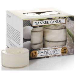 Yankee Candle Teelichter 12er Pack Sea Salt & Sage