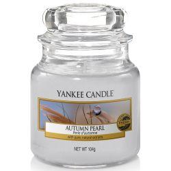 Yankee Candle Jar Glaskerze klein 104g Autumn Pearl