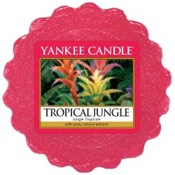 Yankee Candle Tart / Melt Tropical Jungle