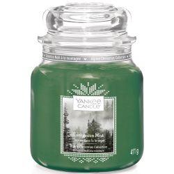 Yankee Candle Jar Glaskerze mittel 411g Evergreen Mist