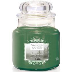 Yankee Candle Jar Glaskerze klein 104g Evergreen Mist